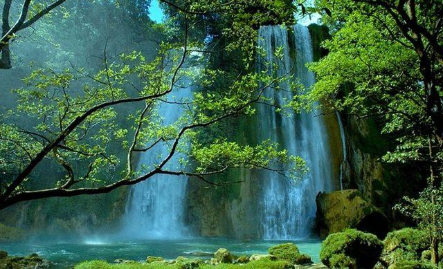 يضم جبل بونشاك اندونيسيا اماكن طبيعية رائعة وهي من اجمل الاماكن السياحية في اندونيسيا ويقصدها الكثير من السياح ومنهم العرب على وجه الخصوص، تتميز بونشاك بهوائها النقي وطبيعتها الساحرة.