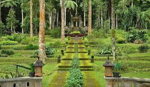 5 انشطة سياحية يمكن القيام بها في الحديقة النباتية في بالي
